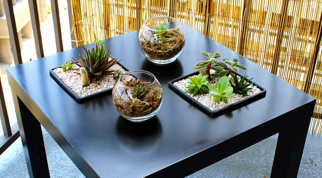 IKEA HACK: SUNKEN SUCCULENT LACK TABLE GARDEN