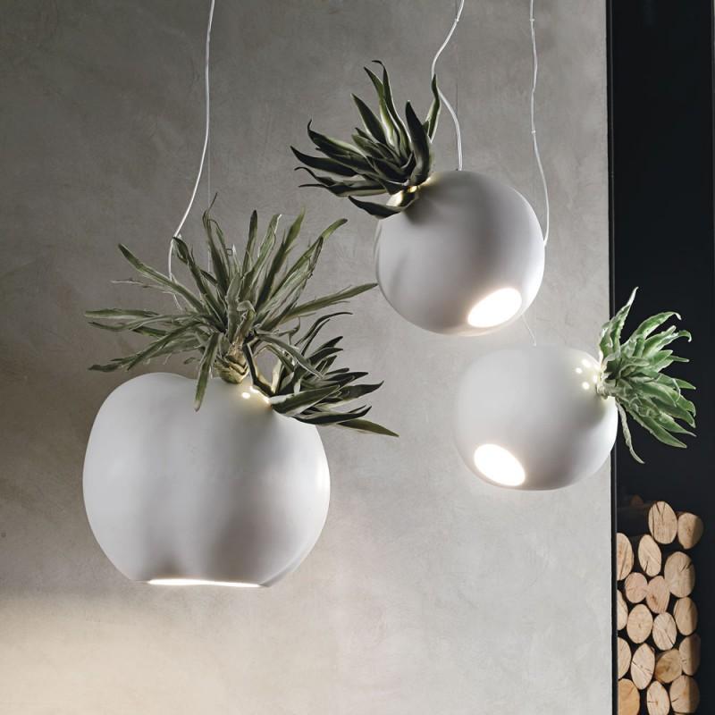 Lampada porta pianta